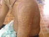 shoulder10